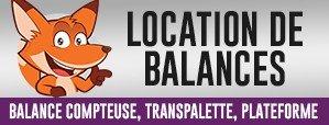 Location de balances commerce et industrielle - Balance compteuse, Transpalette, Plateforme
