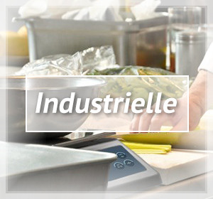 cover rayon Balance industrielle